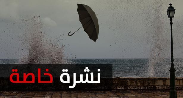 صورة نشرة خاصة .. رياح وزخات رعدية قوية يومي الأربعاء والخميس بهذه المناطق