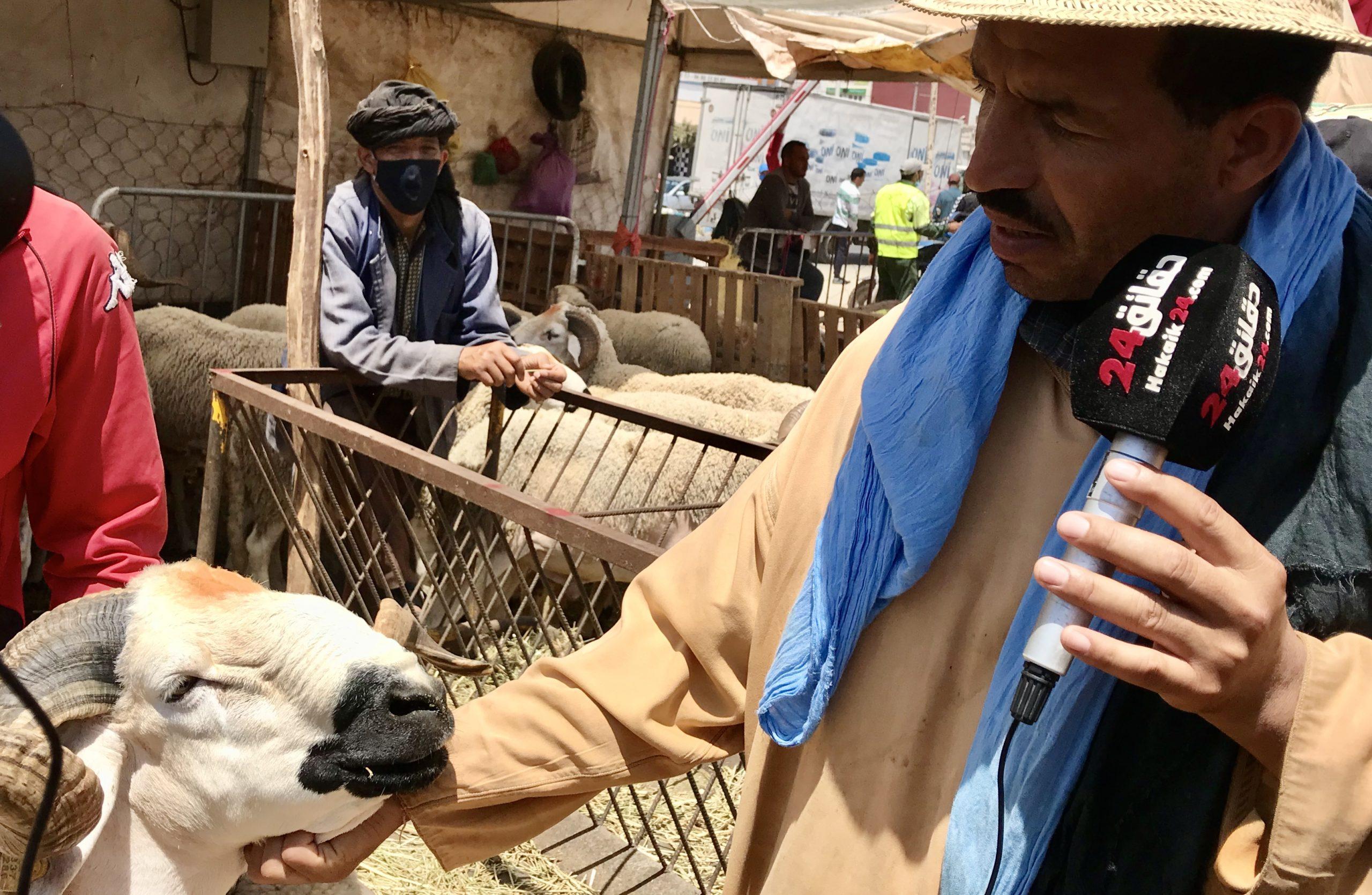صورة مباشرة من رحبة الغنم بأكادير : الخير موجود شاري قليل والثمن طايح