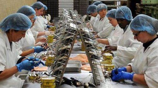 صورة وكيل الملك يقرر متابعة مسؤولين بمصنع لتصبير السمك بأسفي