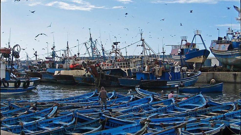 صورة كورنا تعجل بإغلاق ميناء الصويرة ومهنيون متخوفون من إجلاء المراكب نحو أسفي