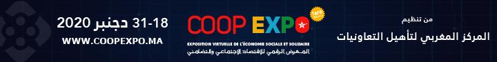المعرض الرقمي للاقتصاد الاجتماعي والتضامني