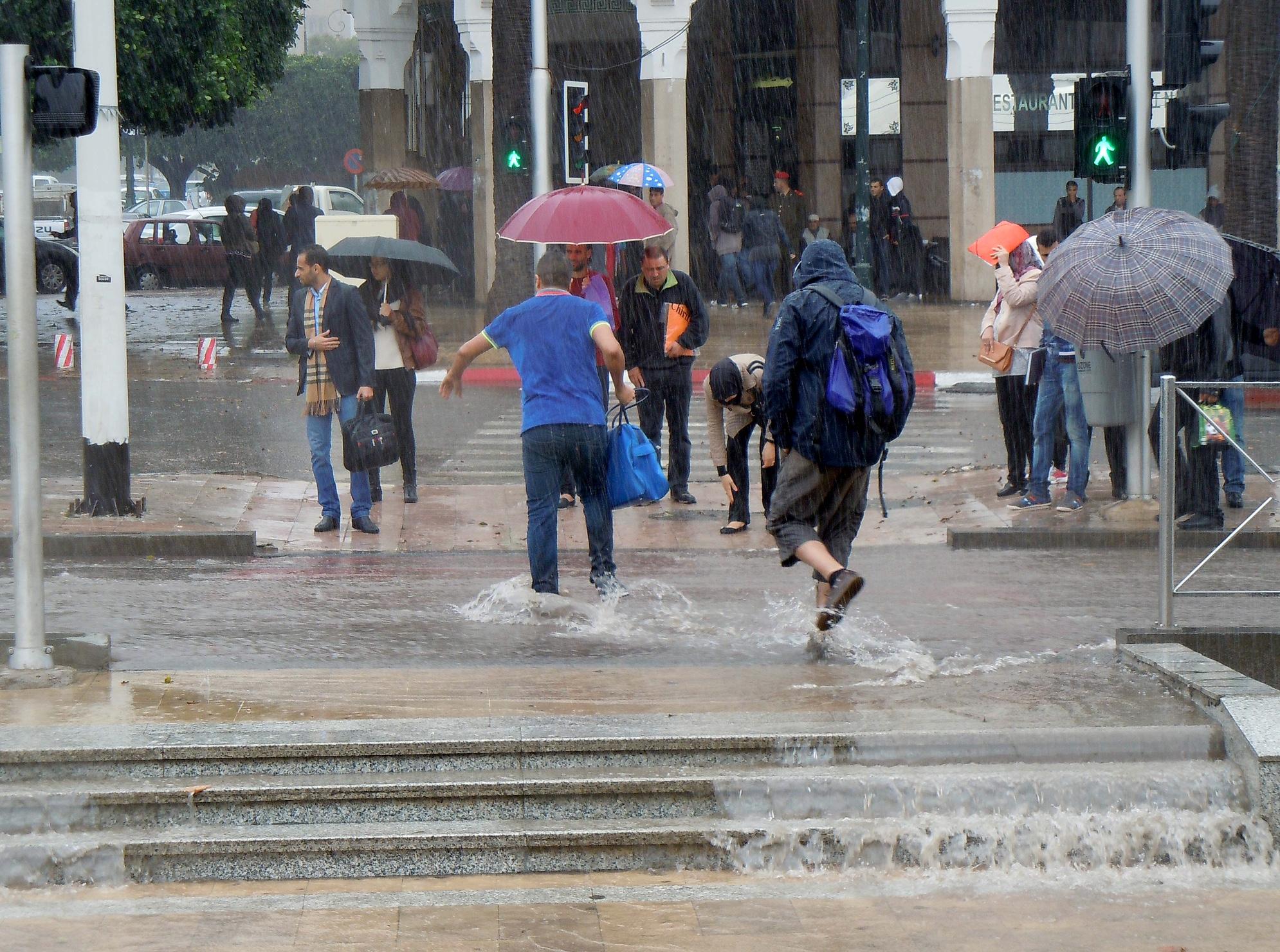 صورة مقاييس التساقطات المطرية خلال 24 ساعة بالمملكة