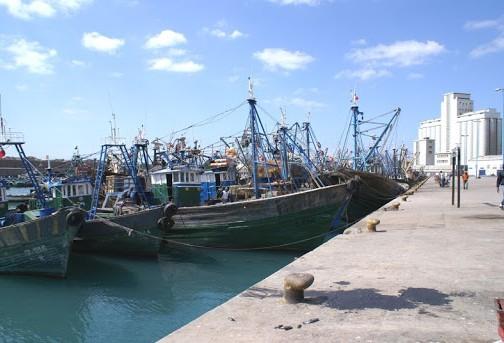 صورة جمعية مهنية تطالب بتزويد ميناء أسفي بالصناديق البلاستيكية الموحدة