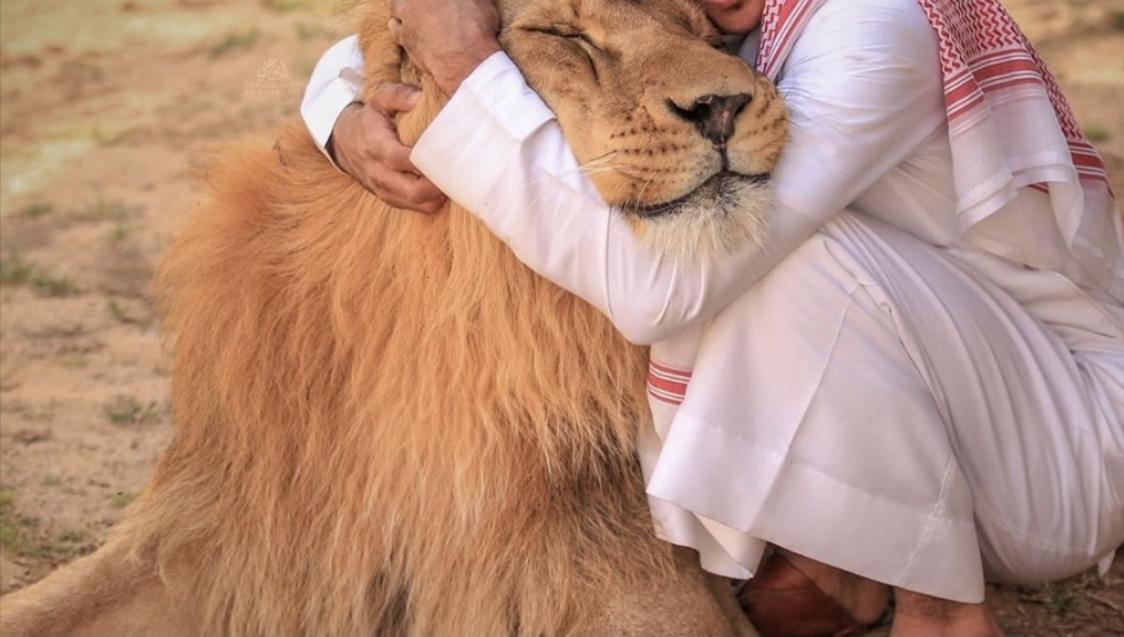 صورة السلطات السعودية تدعو مالكي الحيوانات المفترسة إلى تسليمها فورا لهذا السبب