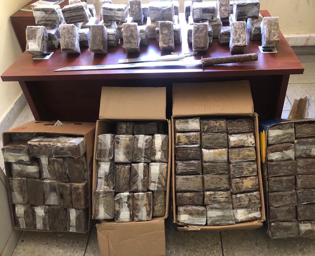 صورة فاس .. إحباط محاولة تهريب 145 كلغ من المخدرات عبر وكالة لنقل للبضائع