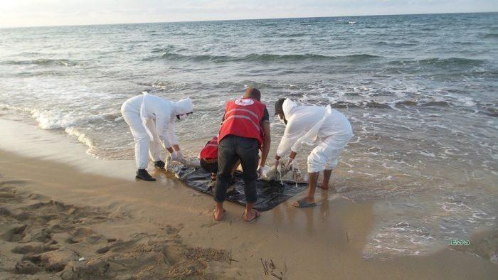 صورة أمواج بحر أصيلة تلفظ جثة سيدة وطفلها