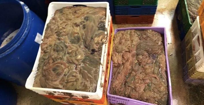 """صورة حجز مواد فاسدة بمعملا لصناعة """"الكاشير """" ببركان"""